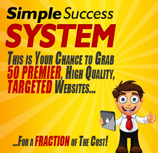 simple success system